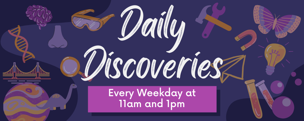 Daily Discoveries at 11am and 1pm Daily
